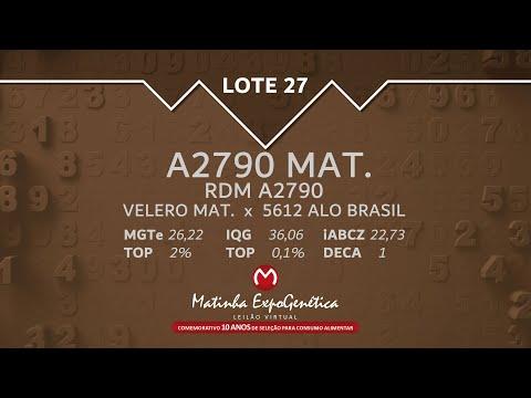 LOTE 27 MATINHA EXPOGENÉTICA 2021