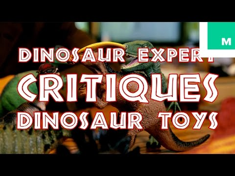 Everyone Should Watch This Dinosaur Expert Critiqu