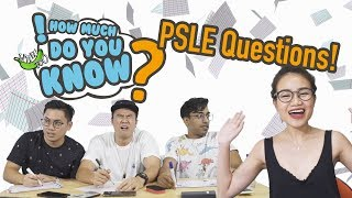 How Much Do You Know - PSLE Questions