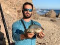 Surf Fishing Southern California for Surfperch