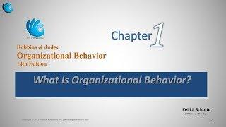 What is Organizational Behavior   Organizational Behavior (Chapter 1)
