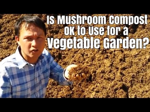 Is Mushroom Compost & other Recycled Materials OK for a Vegetable Garden ?