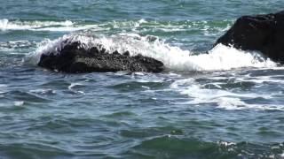 © Тест съемки видеокамерой 4К Sony FDR-AX33. Черное море моё-6! //(Друзья! ПОДПИСЫВАЙТЕСЬ НА МОИ КАНАЛЫ и смотрите фильмы, сюжеты и ТВ передачи об подводном мире Чёрного и..., 2015-10-08T18:05:21.000Z)