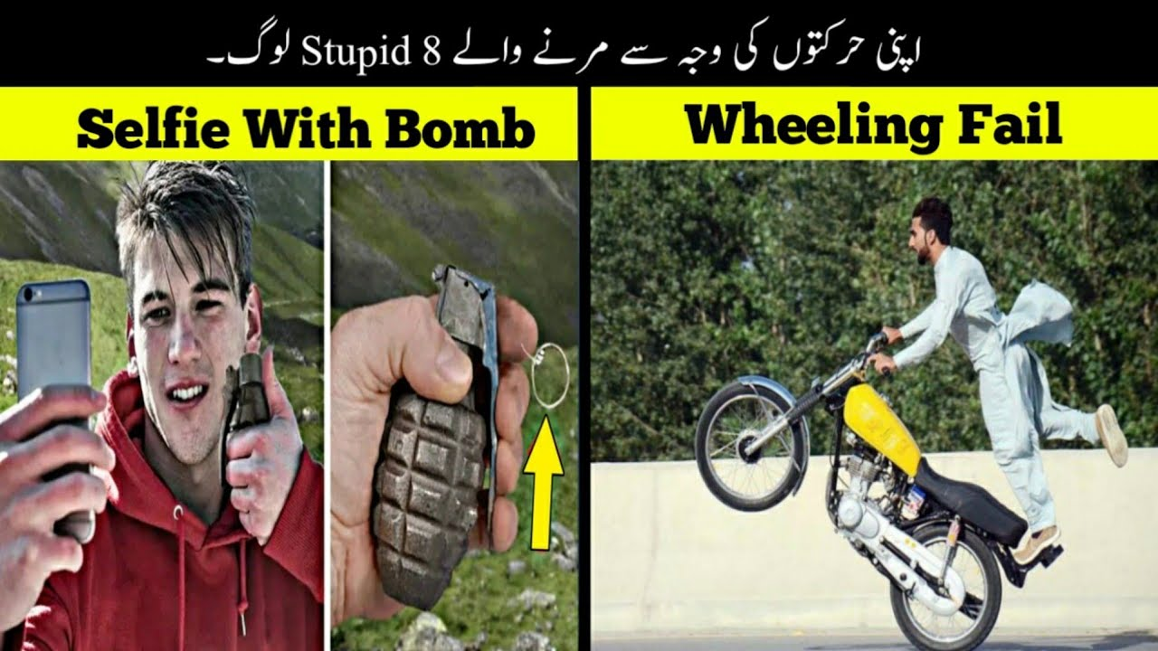 8 Most Stupid People In The World | دنیا کے بےوقوف ترین لوگ | Haider Tv