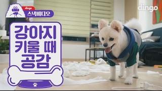 [스낵비디오] 강아지 키울 때 공감