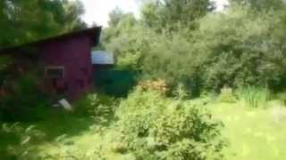 Часть дома в Пушкинском районе, п. Зеленоградский(, 2013-07-10T12:10:37.000Z)