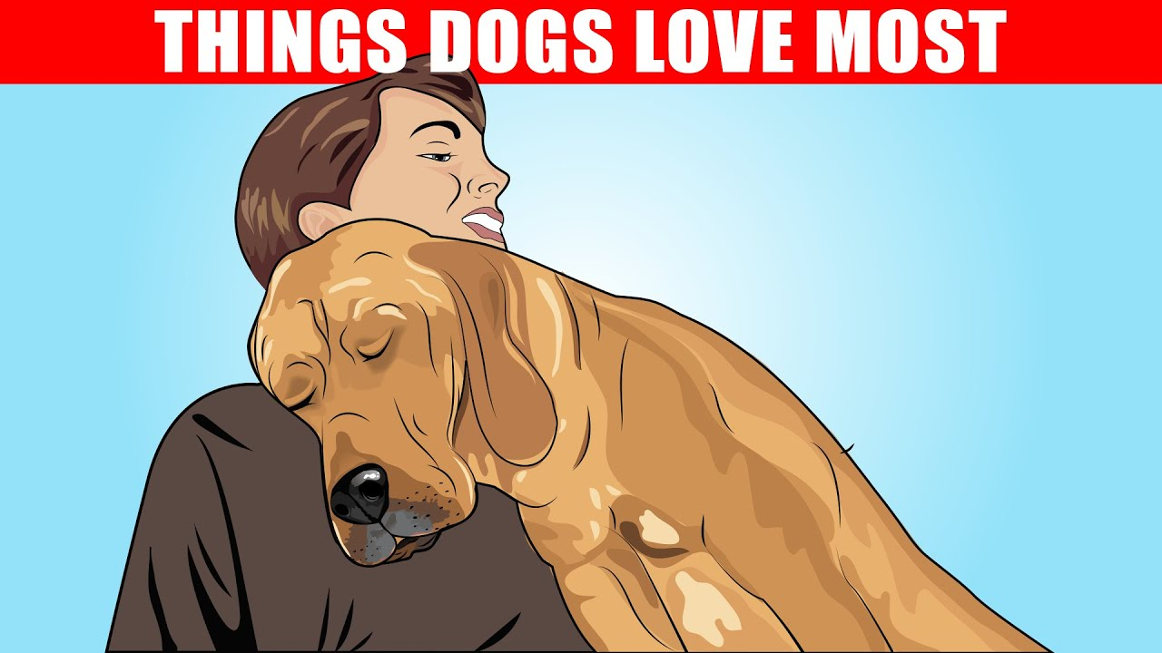 For the Love of Dogs cover image