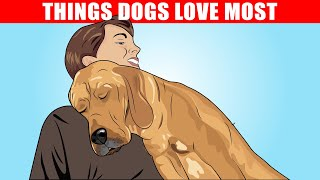 15 Things Dogs Love the Most