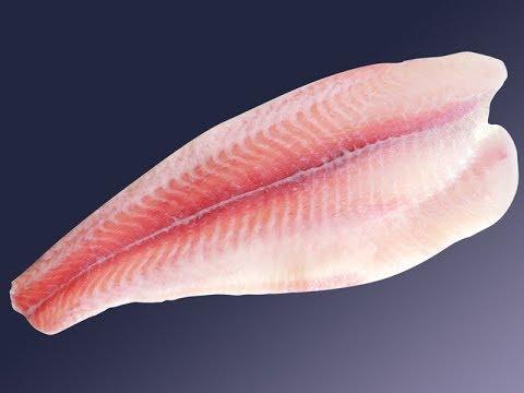 ★ Почему рыбу пангасиус нельзя есть. Эта рыба для бедного слоя населения разрушает организм.