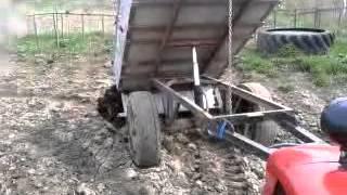 Разгрузка прицепа с навозом трактором Foton Lovol TE-254 / Unloading a trailer with manure