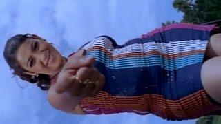 Shivamani Telugu Movie || Yelo Yelo Video Song || Nagarjuna, Rakshita