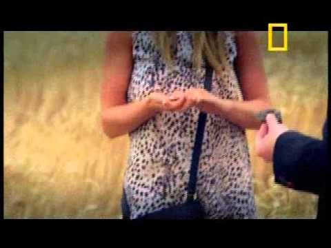 Los Ilusionistas Invasion Extraterrestre parte 1 National Geographic Channel