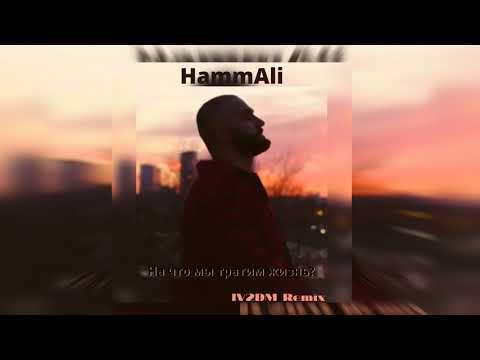 HammAli - На что мы тратим жизнь ? (IV2DM Remix)