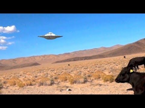 Proof Aliens Control Area 51? - UFO Encounter/Sighting In Nevada Desert (Parody/Spoof/Funny)