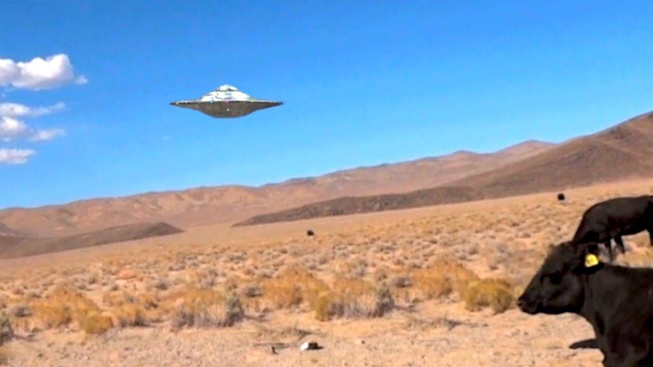 Alien Craft At Area  In Nevada