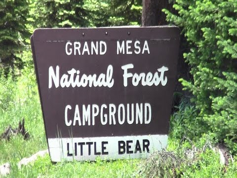 Grand Mesa Colorado Little Bear Campground
