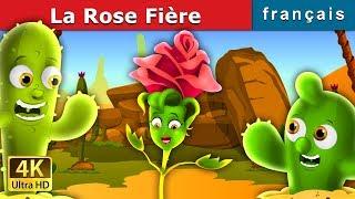 La Rose Fière| Histoire Pour S'endormir | Contes De Fées Français