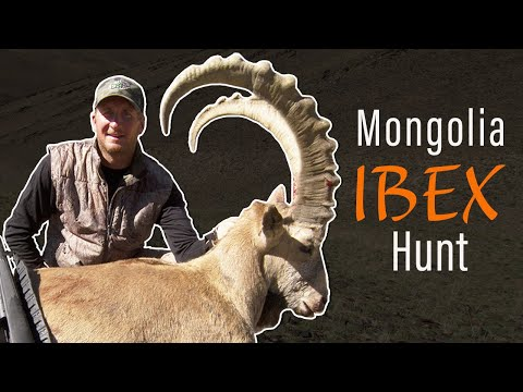 Hunting Ibex In Mongolia With Guy Eastman (Eastmans' Hunting TV)