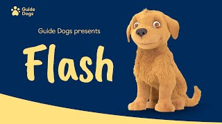 GUIDE DOGS | FLASH ANIMATION