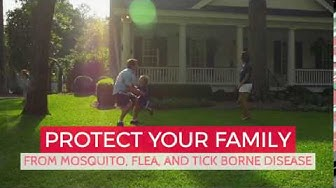 Mosquito Control Charlotte NC