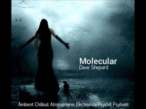 Psychill Ambient Electronic Psybient Ethno-MOLECULAR