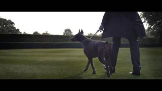 KOLLEGAH   John Gotti prod  von Alexis Troy Official HD Video