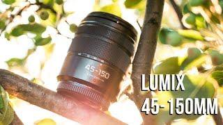 Panasonic Lumix 45-150mm Lens Review - 200 BUDGET Tele Zoom