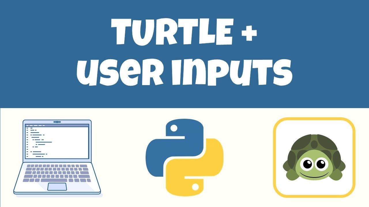 Python Turtle + User Inputs