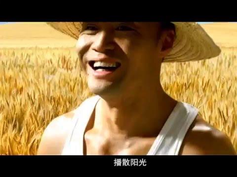 智慧阳谷 阳谷手机台宣传片