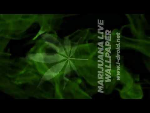 MYSTICAL AND ENCHANTING WEED LIVE WALLPAPER (Medical Marijuana) A Lovely and large sugar Marijuana pot leaf encircled with swirling green magic smoke ...