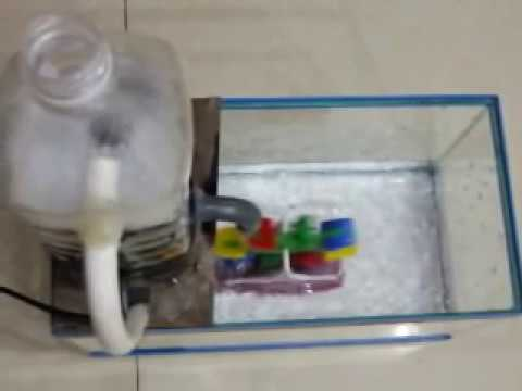 Science project : Wastewater Treatment