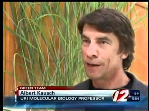 Researchers making biofuel from grass