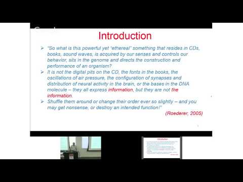 Information: Fundamental Quantity of the Universe?!