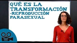 Qué es la transformación -reproducción parasexual