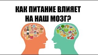 Как питание влияет на наш мозг?