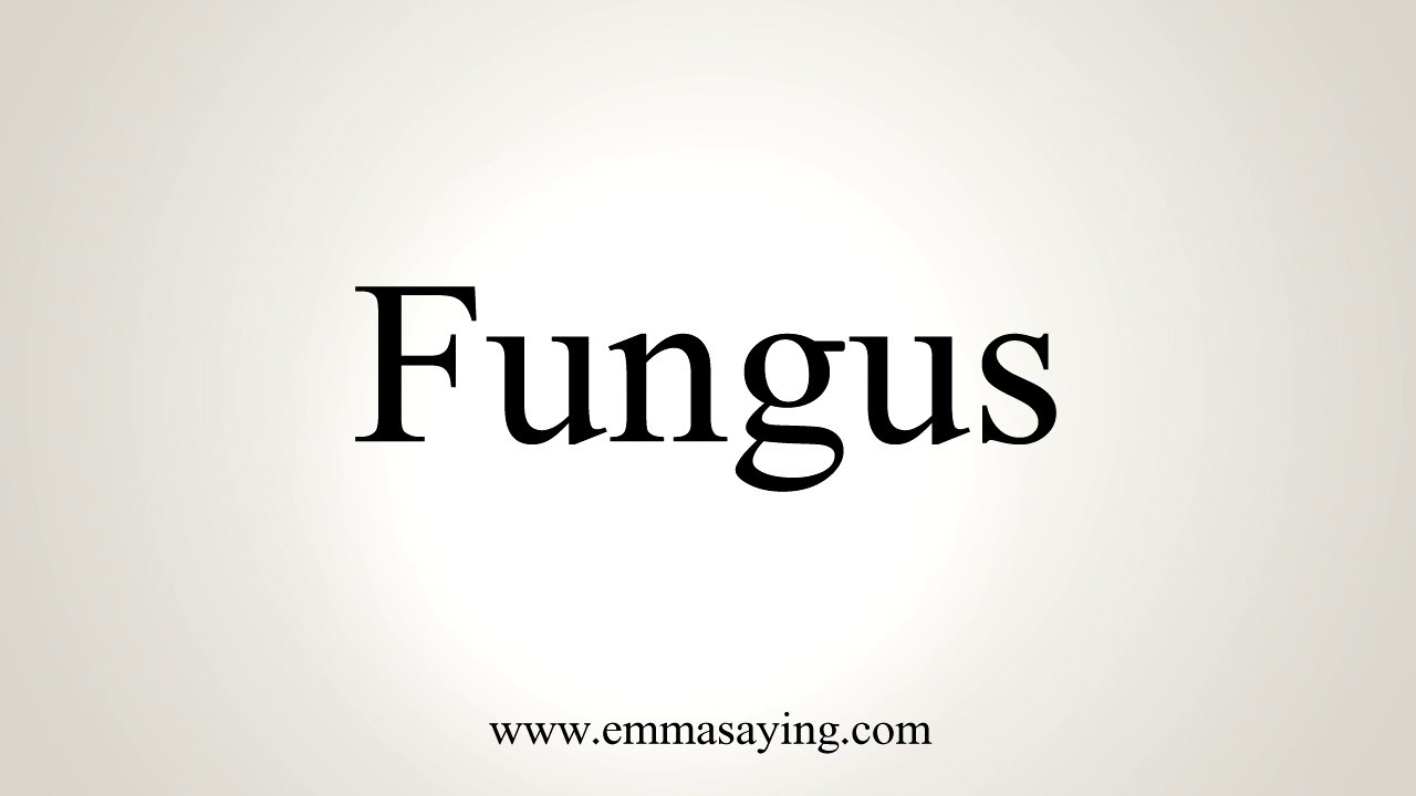 How To Pronounce Fungus Youtube