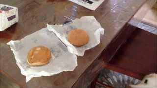 Mcdonalds Hamburgers Should Be Dog Food -- Labrador Retrievers