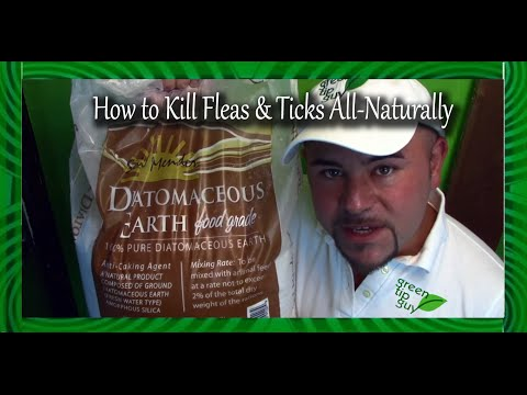 How To Kill Fleas And Ticks All Naturally