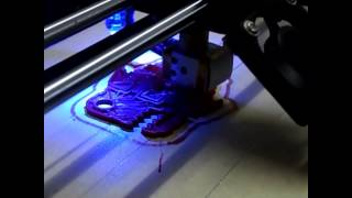 print a fish with weisen fdm 3d printer