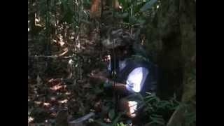 Voices de la Luna: Hunting for Jaguar in the Amazon