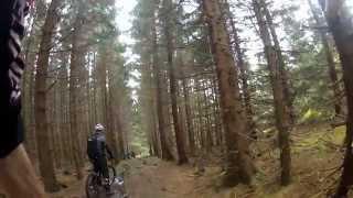 Wochenende im Harz