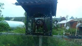 Екатеринбург, сад ,,Родничек,, . Чудо  в саду, надпись злая собака и картинка собака, рядом перегрыз