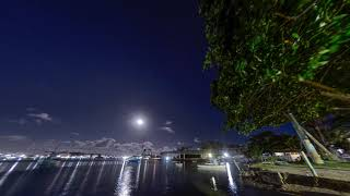 Eclipse Lunar de 2019
