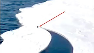 In 1985 Scientists Made A Chilling Discovery In Antarctica After Finding This On The Coast