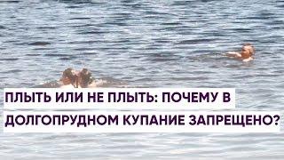 Плыть или не плыть: почему в Долгопрудном купание запрещено?