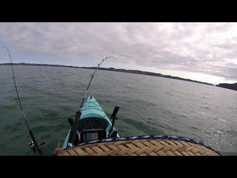 Crazy Moment Shark Tows Kayaker
