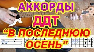В последнюю осень Аккорды ДДТ Юрий Шевчук Разбор песни на гитаре Бой Табы Текст