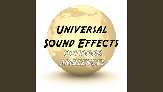 Ambience Airport Internal Sound Effects Sound Effect Sounds EFX Sfx FX Natural Ambience Sounds...