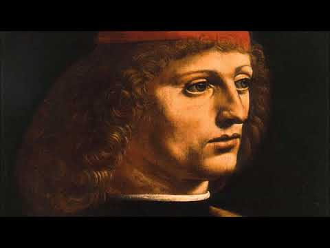 Ambrosiana Art Gallery – Portrait of a musician – Milan | Audio Guide | MyWoWo (Travel App)